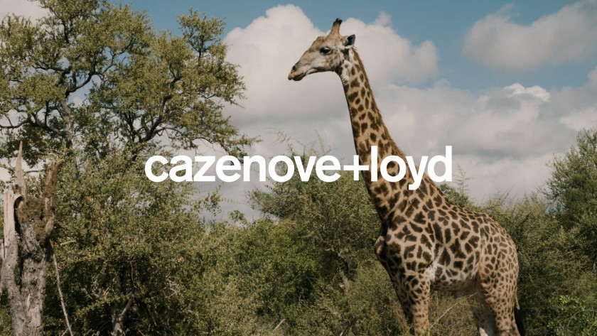 25 Years of Safari in Africa | cazenove+loyd
